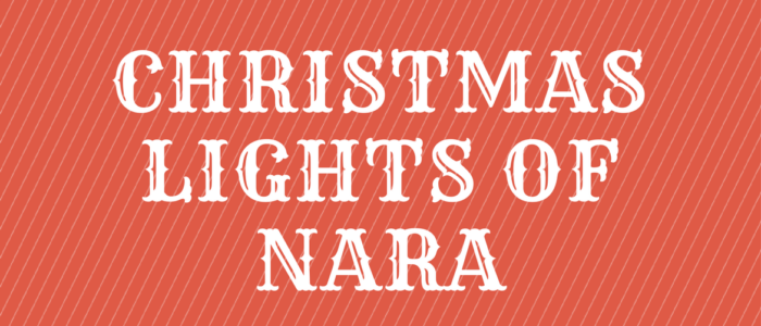 Christmas Lights Of NARA